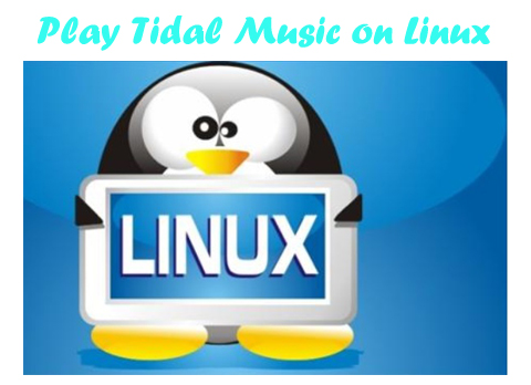 play tidal on linux