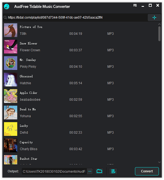 load tidal audios to audfree